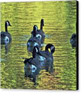 On Golden Pond Canvas Print by DigiArt Diaries by Vicky B Fuller