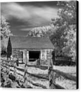 On The Farm Canvas Print by Joann Vitali