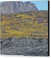 On The Matanuska Glacier Canvas Print