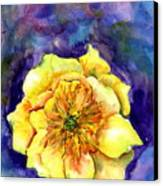 One Cactus Flower Canvas Print