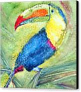 One Can't But Toucan Canvas Print
