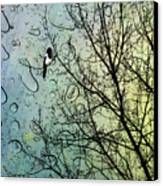 One For Sorrow Canvas Print by John Edwards