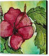 One Pink Hibiscus Canvas Print