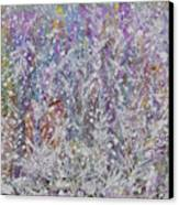 Opalescent Canvas Print by Don  Wright