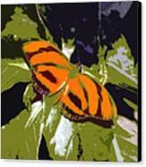 Orange Butterfly Canvas Print