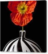 Orange Iceland Poppy Canvas Print