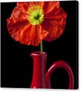 Orange Iceland Poppy In Red Pitcher Canvas Print