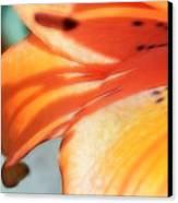Orange Petal Dreams Canvas Print