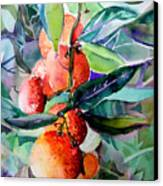 Oranges Canvas Print by Mindy Newman