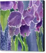 Orchid Rain Canvas Print