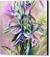 Orchids- Botanicals Canvas Print