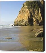 Oregon Coast Canvas Print