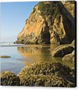 Oregon Seascape Canvas Print