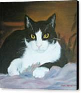 Oreo Canvas Print