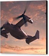 Ospreys In Flight Canvas Print