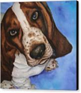 Otis The Basset Hound Canvas Print