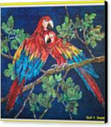 Out On A Limb- Macaws Parrots - Bordered Canvas Print