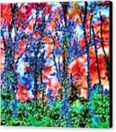 p1050894s Kancamagus on Fire Canvas Print