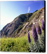 Pacific Coast View With Blue Wildflowers Canvas Print by George Oze