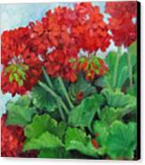 Painting Of Red Geraniums Canvas Print by Cheri Wollenberg