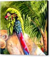 Pajaro Canvas Print by Karen Stark