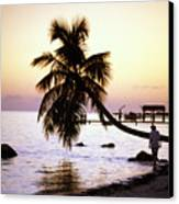 Palm At The Moorings Canvas Print