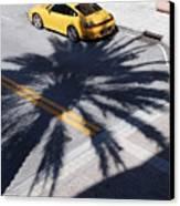 Palm Porsche Canvas Print