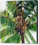 Palma Tropical Canvas Print
