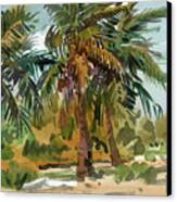 Palms In Key West Canvas Print