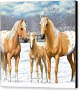 Palomino Appaloosa Horses In Winter Canvas Print