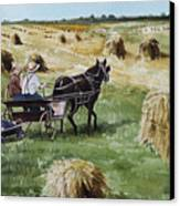 Parade Of Oats Canvas Print by Kelly Morrow