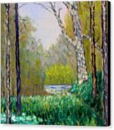 Park Meadow Canvas Print