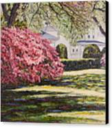 Park Spring Blossom With Shadows Canvas Print