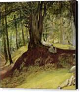 Parkhurst Woods Canvas Print