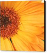 Partly Sunny Canvas Print