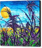 Patch Of Field Grass Canvas Print