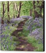 Path Through The Bluebells Canvas Print by Brandy Woods