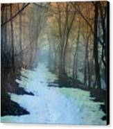 Path Through The Woods In Winter At Sunset Canvas Print by Jill Battaglia