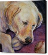 Patiently Waiting Canvas Print by Susan Jenkins