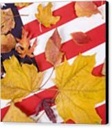 Patriotic Autumn Colors Canvas Print