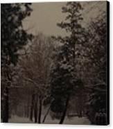 Peaceful Snow Dusk Canvas Print