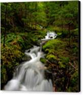 Peaceful Stream Canvas Print by Mike Reid