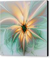 Peach Allure Canvas Print