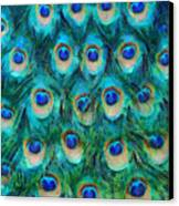 Peacock Feathers Canvas Print by Nikki Marie Smith