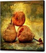 Pears Canvas Print by Bernard Jaubert