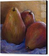 Pears In Natural Light Canvas Print