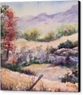 Pee Dee Creek Canvas Print
