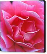 Peggy Lee Rose Bridal Pink Canvas Print