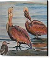 Pelican Party Canvas Print