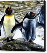 Penguines Original Oil Painting Canvas Print by Natalja Picugina